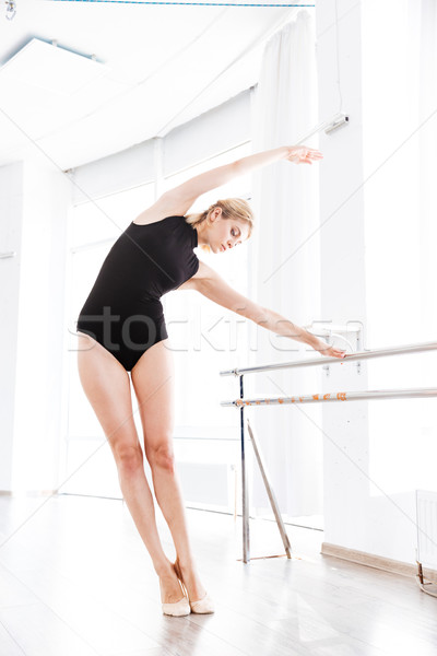 女性 バレリーナ ダンス スティック 壁 バレエ ストックフォト © deandrobot