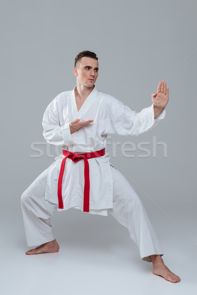 Handsome sportsman dressed in kimono practice in karate Stock photo © deandrobot