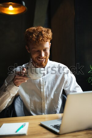 Shot of serious readhead young freelancer working at home Stock photo © deandrobot