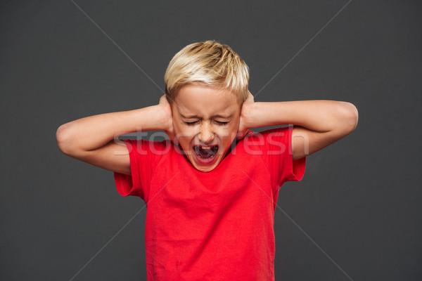 Gritando pequeno menino criança orelhas mãos Foto stock © deandrobot