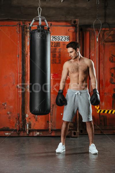 Immagine giovani concentrato boxer posa palestra Foto d'archivio © deandrobot
