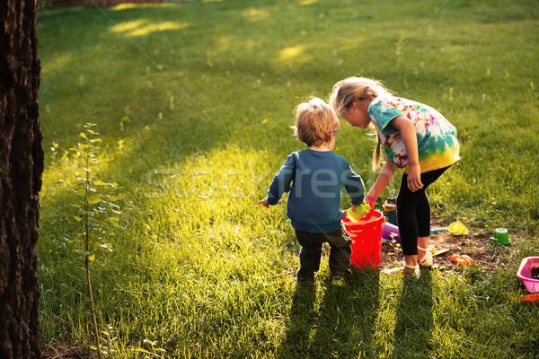 Top мнение мальчика девушки площадка трава Сток-фото © deandrobot