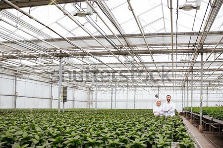 Young man in apron working with plants in greenery Stock photo © deandrobot