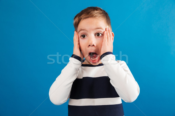 Shocked young boy in sweater holding head and looking away Stock photo © deandrobot