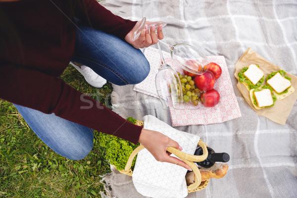 Kadın piknik sepeti şarap bardakları battaniye Stok fotoğraf © deandrobot