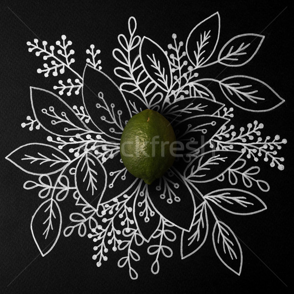 Lime over outline floral hand drawn Stock photo © deandrobot