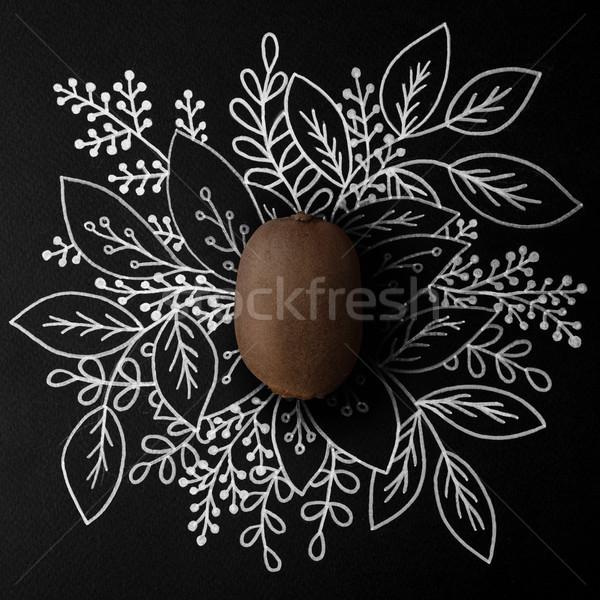 Kiwi skicc virágmintás kézzel rajzolt étel háttér Stock fotó © deandrobot