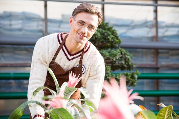 Heureux Homme fleuriste travail belle rose Photo stock © deandrobot