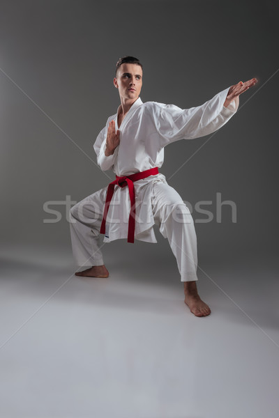 Handsome sportsman in kimono practice in karate Stock photo © deandrobot