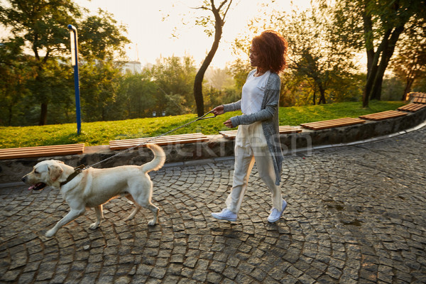 выстрел довольно здорового молодые Lady ходьбе Сток-фото © deandrobot