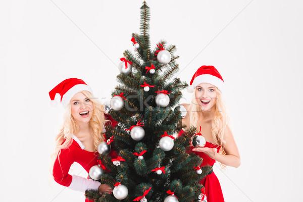 близнецы сокрытие за рождественская елка счастливым Сток-фото © deandrobot