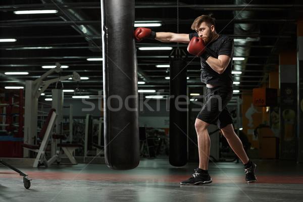 концентрированный молодые сильный спортивных человека Боксер Сток-фото © deandrobot