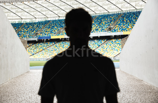 Silhouette of a man walking throught the entrance Stock photo © deandrobot