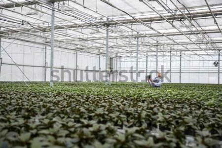 Joven jardinero pie invernadero jóvenes grave Foto stock © deandrobot