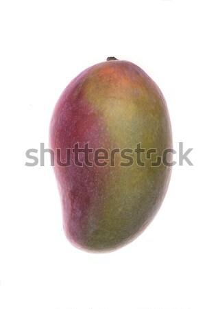Manga fruto isolado branco comida natureza Foto stock © deandrobot