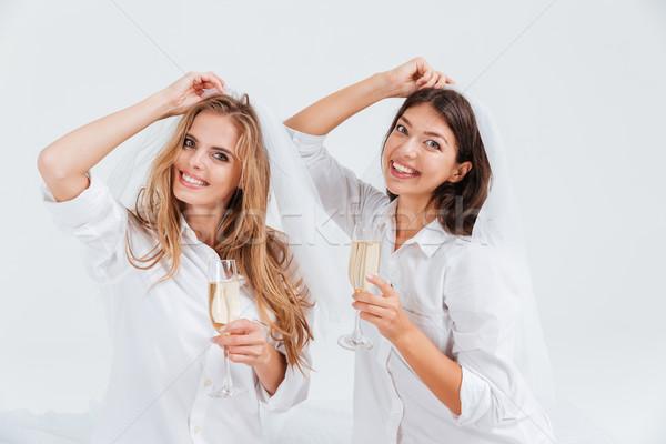 два красивой женщины зацепление вечеринка Сток-фото © deandrobot