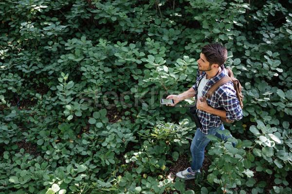 Сток-фото: Top · мнение · парень · лес · человека · телефон