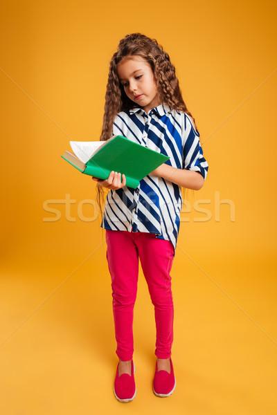 Geconcentreerde meisje kind lezing boek foto Stockfoto © deandrobot