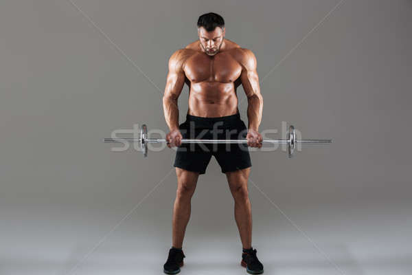 Portrait fort torse nu Homme bodybuilder Photo stock © deandrobot