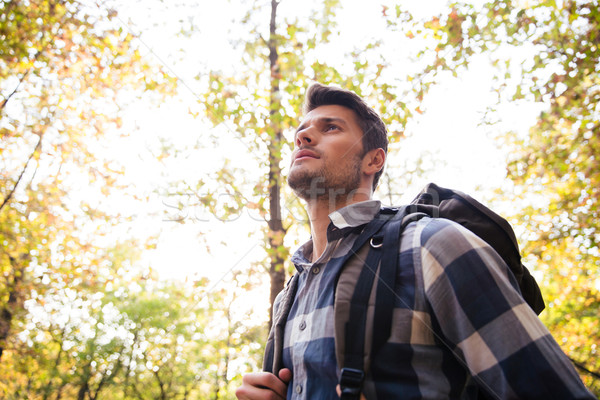 Man traveling in the forest Stock photo © deandrobot