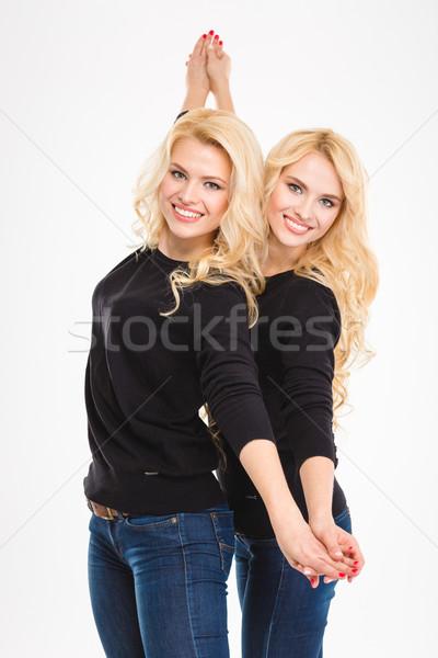 Piękna szczęśliwy młodych siostry bliźnięta Zdjęcia stock © deandrobot