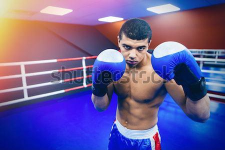 Boxeador boxe anel masculino fitness Foto stock © deandrobot
