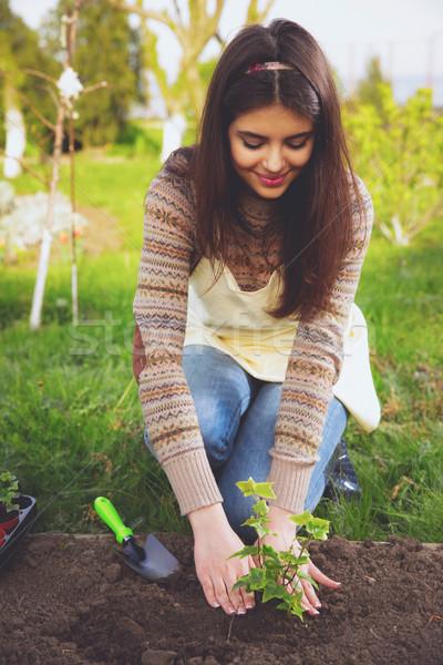 Cute vrouw bloemen tuin bloem Stockfoto © deandrobot