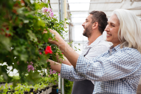 Cheerful workers in garden looking and touching plants Stock photo © deandrobot