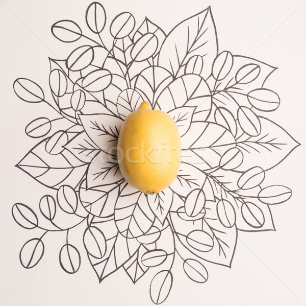 Lemon over outline floral background Stock photo © deandrobot
