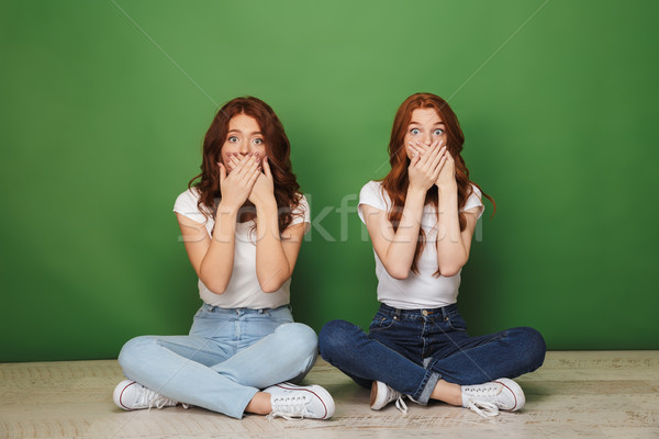 Portrait of two shocked young redhead girls sitting on a floor Stock photo © deandrobot