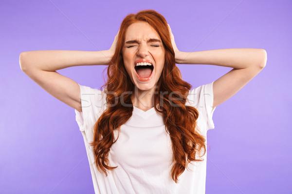 Portret boos jong meisje geïsoleerd violet schreeuwen Stockfoto © deandrobot