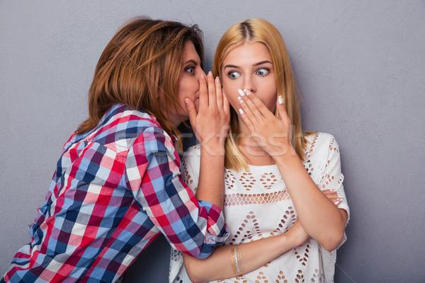 Kadın dedikodu kız arkadaş gri kız yüz Stok fotoğraf © deandrobot