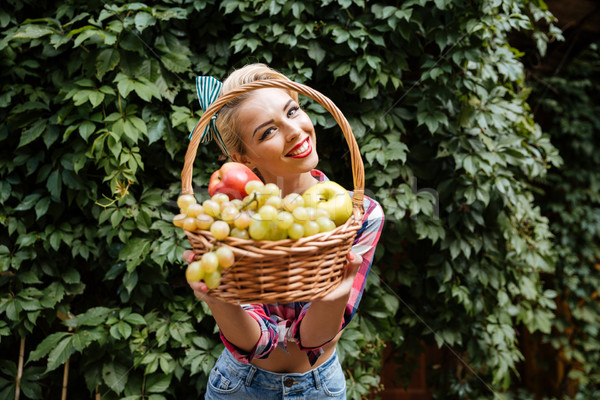 Smiling pin-up girl giving you basket of fresh fruits Stock photo © deandrobot