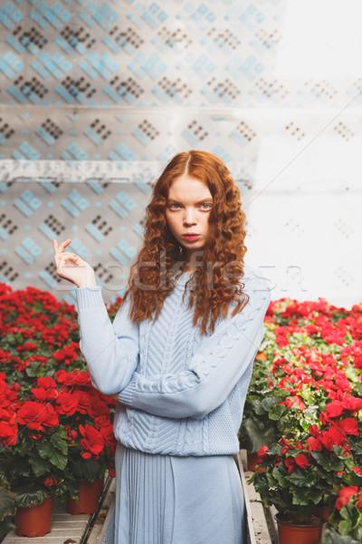 Girl standing between red flowers Stock photo © deandrobot