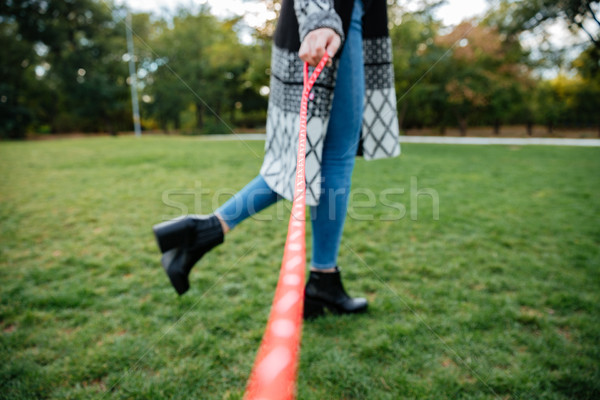 Woman walking with dog on leash at green grass outdoors Stock photo © deandrobot
