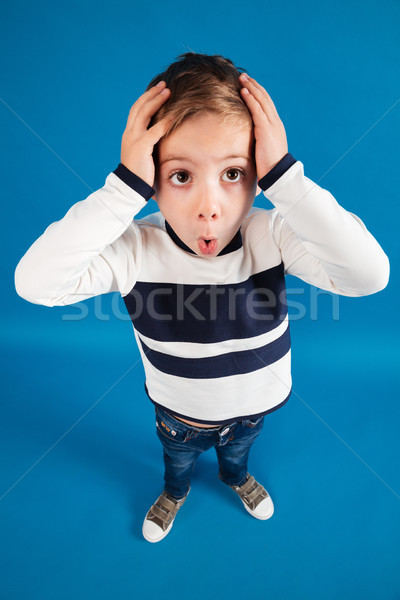 Vertical top view image of shocked young boy in sweater Stock photo © deandrobot