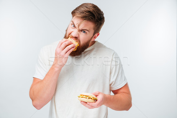 Excited bearded man greedily eating hamburgers Stock photo © deandrobot