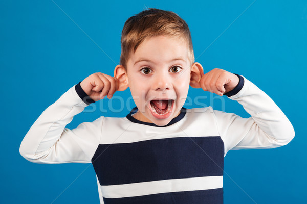 Funny happy young boy in sweater showing grimace at camera Stock photo © deandrobot