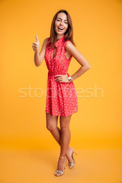Retrato jóvenes encantador mujer vestido rojo pie Foto stock © deandrobot