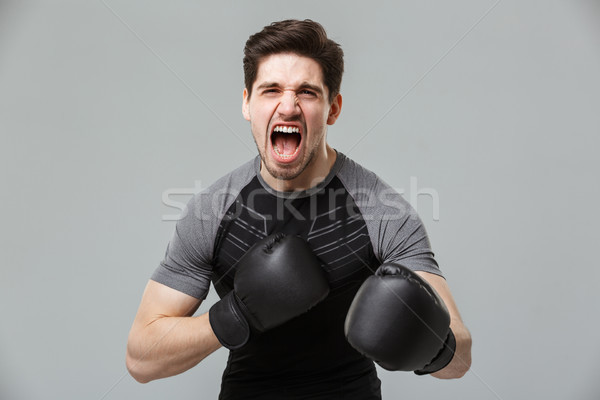Screaming emotional young sportsman boxer Stock photo © deandrobot