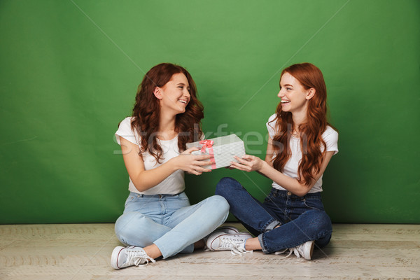 Portrait of two happy girls 20s with ginger hair in casual wear  Stock photo © deandrobot