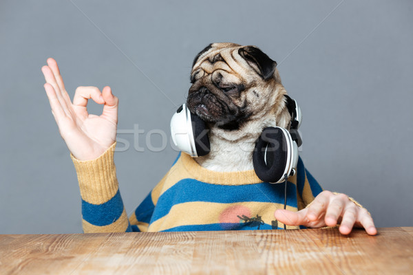 Man with pug dog head in headphones showing ok gesture Stock photo © deandrobot