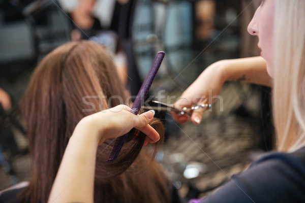 Beautiful hairdresser doing hairstyle to her client in beauty salon Stock photo © deandrobot
