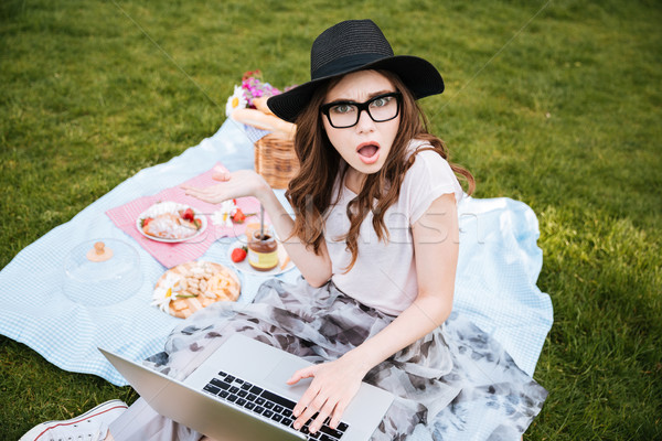 Surprised cute young woman using laptop on picnic Stock photo © deandrobot