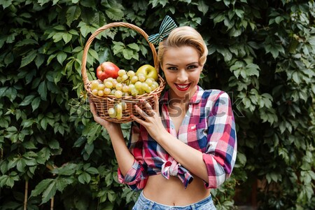 Happy attracttive pin-up girl with basket of fresh fruits Stock photo © deandrobot