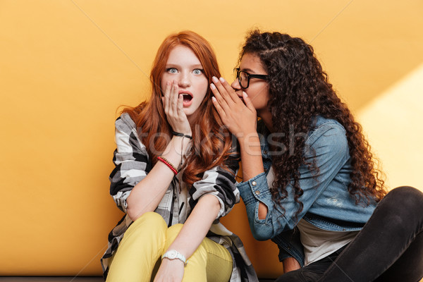 Two lovely young women talking and telling secrets Stock photo © deandrobot