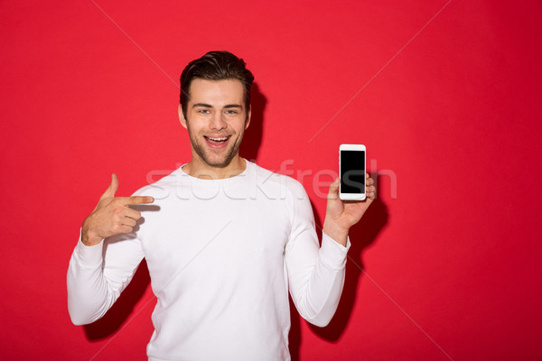Picture of happy man in sweater looking at the camera Stock photo © deandrobot