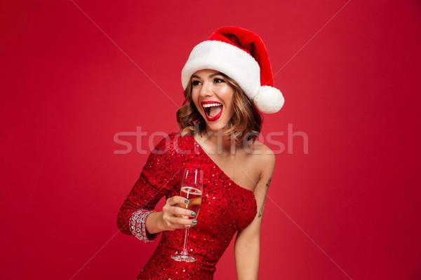 肖像 幸せ きれいな女性 クリスマス 帽子 ドレス ストックフォト © deandrobot