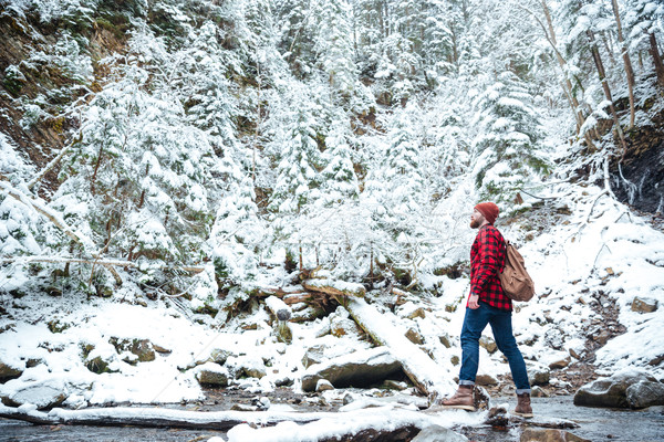 Man with backpack walking near the river in winter forest Stock photo © deandrobot