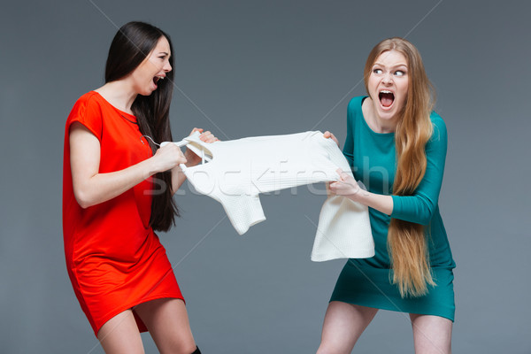 Two angry women quarreling and fighting for white dress  Stock photo © deandrobot
